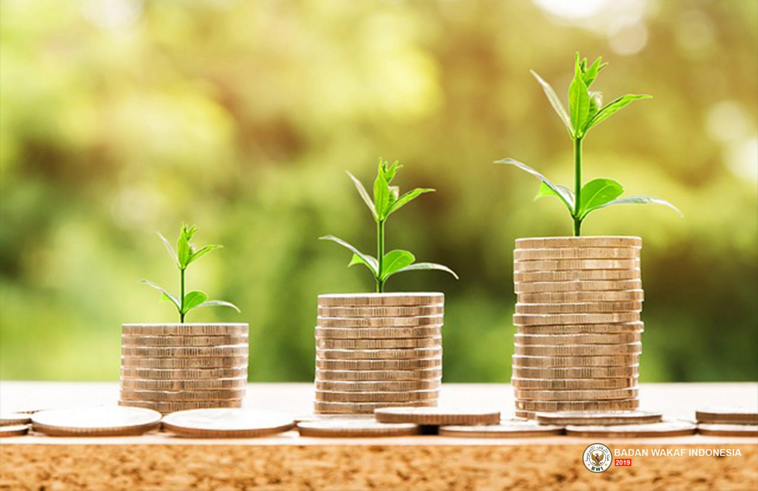Wakaf Produktif  Bisa Perkuat Stabilitas Keuangan Indonesia