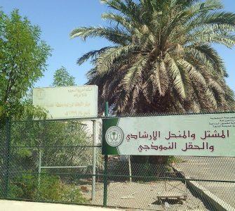 Sejarah Awal Mula Wakaf  - Kebun Khaibar Umar Bin Khatab 335x300 - Sejarah Awal Mula Wakaf